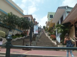 Guayaquil (173)