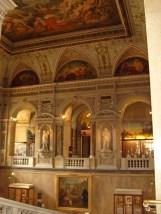 Museo de historia natural (119)