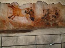 Museo de historia natural (50)