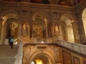 Museo de historia natural (60)