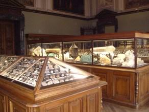 Museo de historia natural (8)
