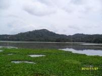 PANAMA (14)