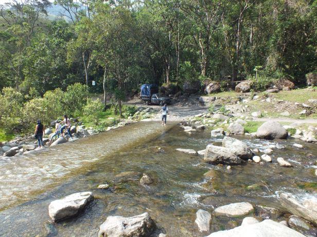 Valle del Cocora (3)