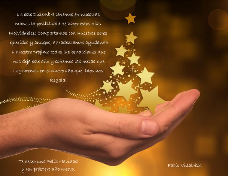 Feliz Navidad FaVi